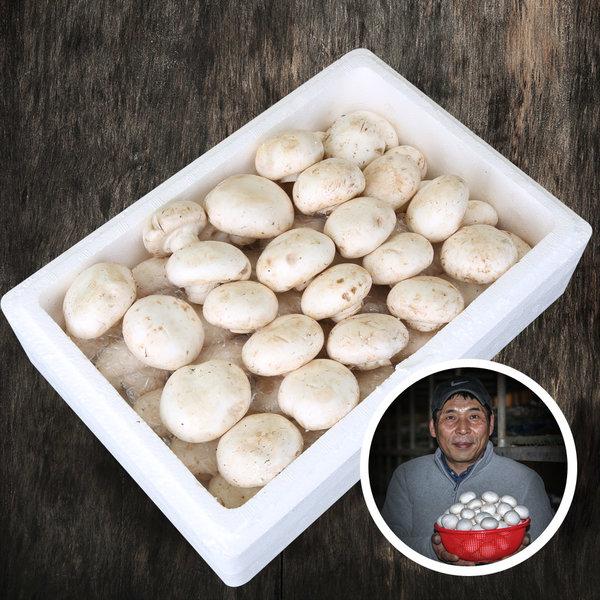 못난이 양송이 버섯 2kg/식자재용