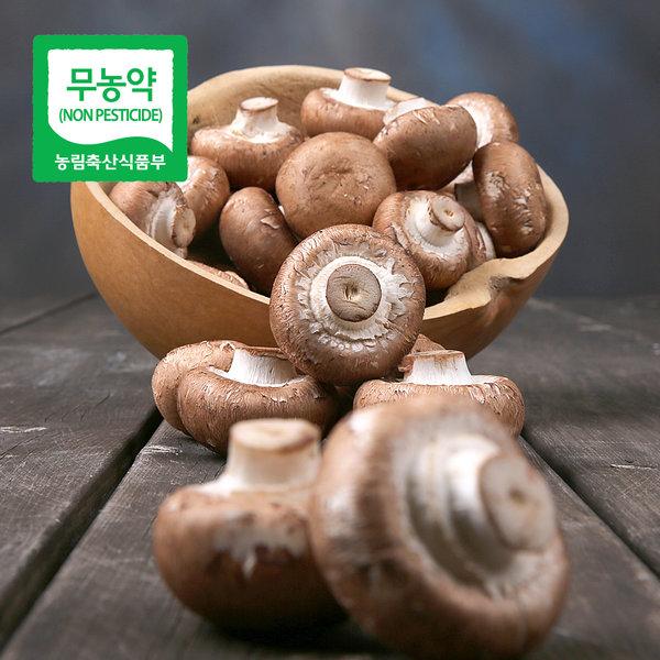 브라운 양송이버섯1kg/특/친환경/급식납품농가돕기