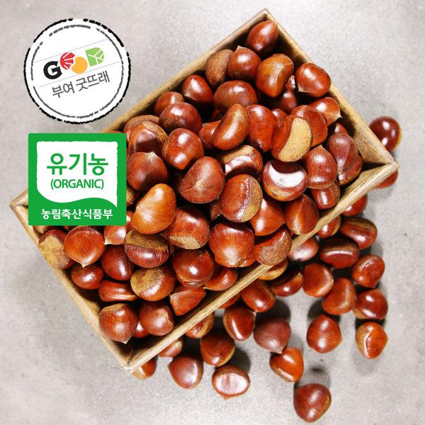 유기농 밤 대 2kg / 2019 햇밤